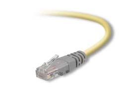 Belkin - Crossover-Kabel - RJ-45 (M) bis RJ-45 (M) - 1 m - UTP - CAT 5e