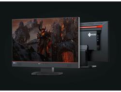 EIZO Foris FS2434-BK - LED-Monitor - 60.5 cm (23.8