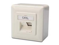 Digitus - CAT 6A Datendose Aufputz