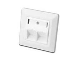 DIGITUS Professional - Wandplatte - weiß, RAL 9010 - 2 Ports