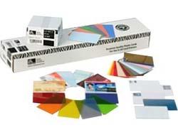 Zebra UHF RFID (Gen2) Card - RF Proximity Card (Packung mit 100 )
